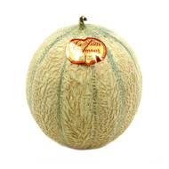 Le Puits d'Amour - Melon Charentais