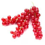 3385630031301 - Fruits Rouges & Co - Groseille rouge