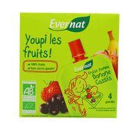 3396413714205 - Evernat - Youpi les fruits Fraise Pomme Banane Cassis bio