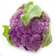 2050000353109 - Prince de Bretagne - Chou fleur violet