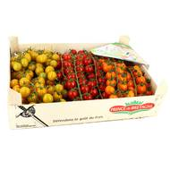 2050000350818 - Prince de Bretagne - Tomate cerise grappe mixte Sans Pesticide