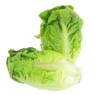 3411060006692 -  - Salade Sucrine