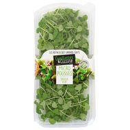 3411060058523 - Cueillettes & Cuisine - Micro-pousses de Basilic Vert