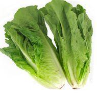 3411060006029 -  - Salade Romaine