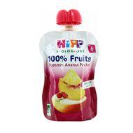 4062300250635 - Hipp - Gourde Pommes Ananas bio dès 6 mois