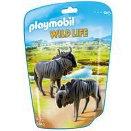 4008789069436 - PLAYMOBIL® Wild Life - Gnous
