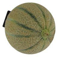 2050000339684 -  - Melon Charentais (gros)