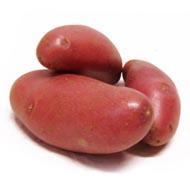 3353040001061 - Les jardins d'Alice - Pomme de terre rouge Franceline