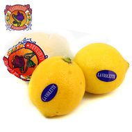 2050000334849 - La Violette - Citron Jaune