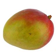 3411060021602 -  - Mangue bio