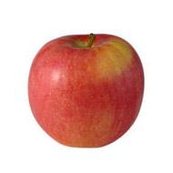 3760074476770 - Les Paysans Bio - Pomme bicolore bio