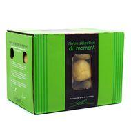 3353040001368 -  - Pomme de terre Galante