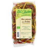 3380380071270 - Ma Vie Sans Gluten - Mini Penne des Andes bio sans gluten.