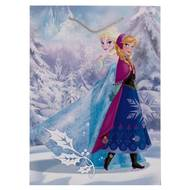 3701037600078 - Reine Des Neiges - Sac cadeau XL avec cordelettes