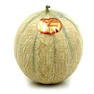 2050000338991 - Le Puits d'Amour - Melon Charentais