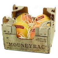 2050000346293 - Mouneyrac - Pomme Golden Rosée