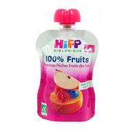 4062300250697 - Hipp - Gourde Pommes Pêches Fruits des bois bio dès 6 mois