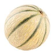 2050000350498 -  - Melon (gros)