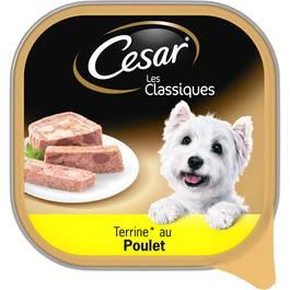 César Terrine au poulet
