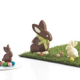 Mastrad Moules lapins en chocolat
