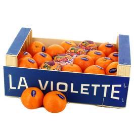 La Violette Mandarine