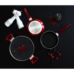 Ménastyl Poêle Cerise - Tous feux dont induction