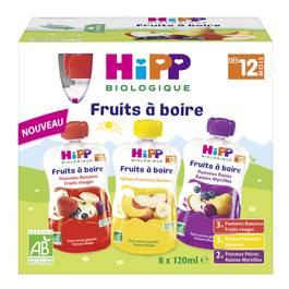Hipp Gourdes Multipack bio, dès 12 mois