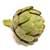 Artichaut Calicot