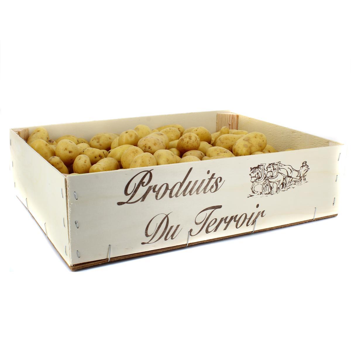 Caisse De Pomme Vide pomme de terre grenaille, caisse de 6kg
