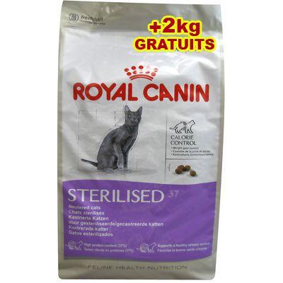 Croquettes pour chat ROYAL CANIN Feline nutrition Sterilised 37 - 12 kg