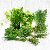 Pack Herbes Aromatiques (photo non contractuelle)