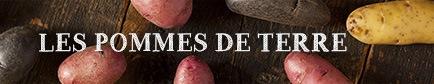 Choisir sa pomme de terre