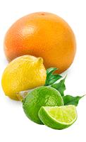 Pomelo, citron et citron vert
