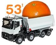 53 tonnes d'oranges et clémentines vendues sur houra