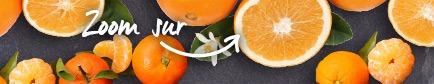 Conseils pour trouver les oranges