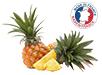 origine des ananas