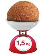 une noix de coco pèse 1.5 kg en moyenne