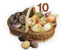 10 variétés de légumes d'autrefois sur houra.fr