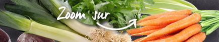 Conseils pour trouver les légumes d'hiver