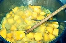 Comment faire pousser un noyau d'mangue