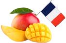 origine des mangues