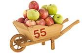 55 tonnes de pommes vendues sur houra par an