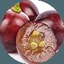 Astuce: comment épépiner le raisin ?