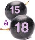15 à 18 grammes de glucides pour 100g