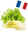 origine des salade