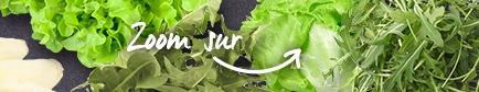 Conseils pour trouver les salade