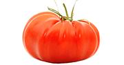 Tomate Marmande