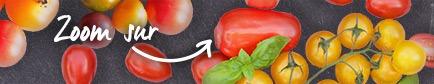 Conseils pour trouver les tomates