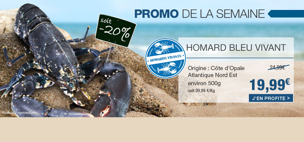 Homard bleu vivant en promo !
