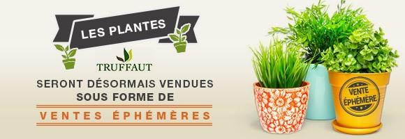 Les plantes Truffaut seront désormais vendues sous forme de ventes éphémères